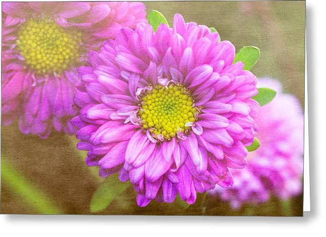 Interior Still Life Greeting Cards - Morning Delight Greeting Card by Arlene Carmel