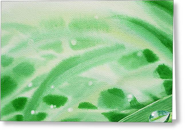 Morning Dew Drops Greeting Card by Irina Sztukowski