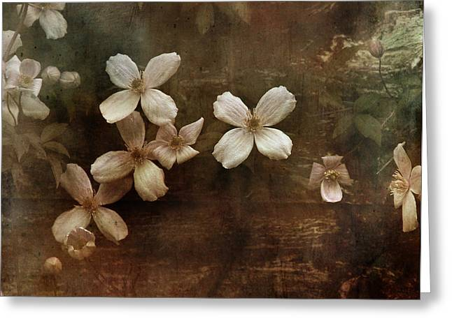 Haze Greeting Cards - Morning. Greeting Card by Dominic Moriarty