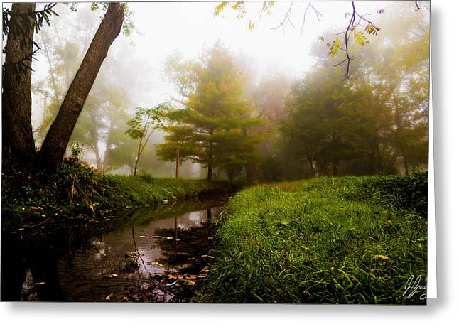 Woodland Scenes Greeting Cards - Morning Dream World Greeting Card by Joshua Zaring