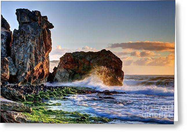 Lithified Greeting Cards - Morning Embrace Greeting Card by DJ MacIsaac