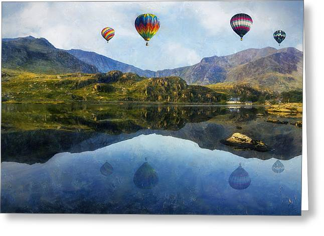Calm Waters Digital Greeting Cards - Morning Flight Greeting Card by Ian Mitchell