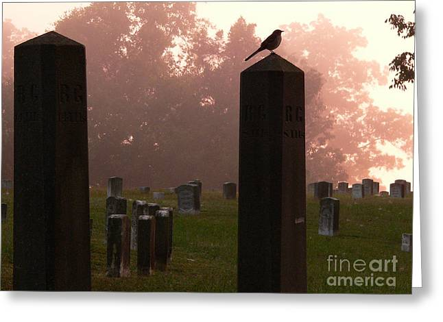 Tennessee River Greeting Cards - Morning Fog along the Tennessee Greeting Card by David Bearden