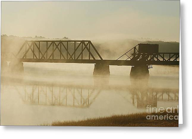 Morning Fog Greeting Card by Cindi Ressler