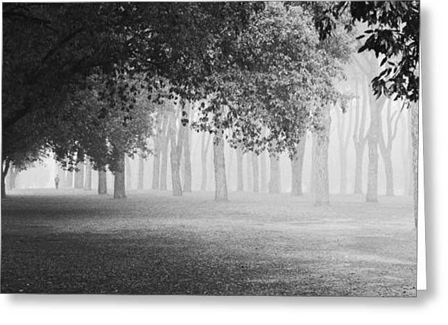 Films Photographs Greeting Cards - Morning Fog Greeting Card by Matteo Chiarello