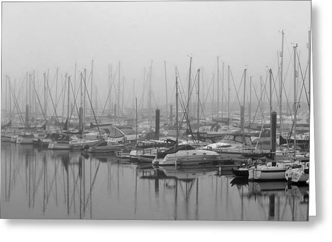 Water Scape Greeting Cards - Morning Fog Greeting Card by Terence Davis