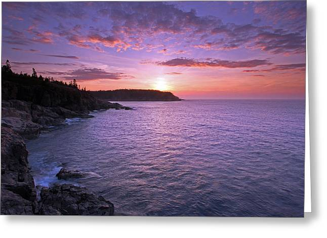 Coastal Maine Greeting Cards - Morning Glory Greeting Card by Juergen Roth