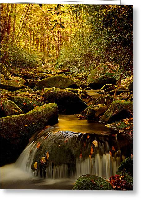 Morning Glow Greeting Card by Mike Eingle