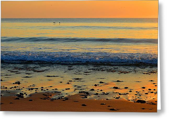 New England Ocean Greeting Cards - Morning Has Broken Greeting Card by Dianne Cowen