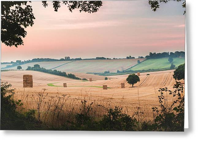 Hay Bales Greeting Cards - Morning Hay Greeting Card by Chris Dale