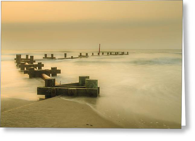 Bill Cannon Photography Greeting Cards - Morning in Stone Harbor Greeting Card by Bill Cannon