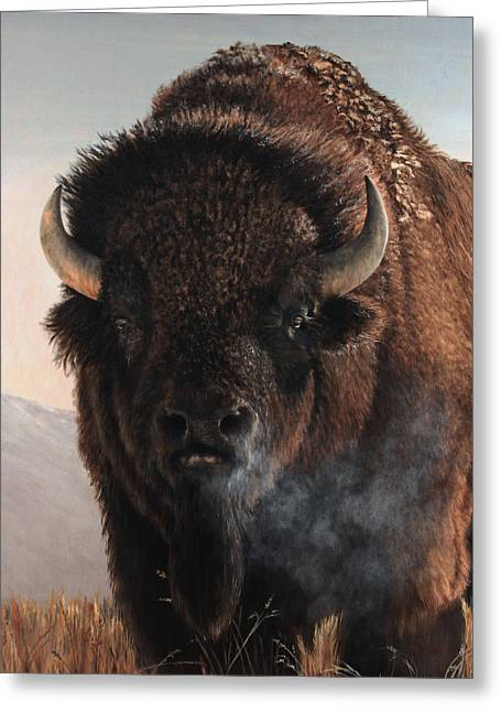 Bison Paintings Greeting Cards - Morning in the Foothills  Greeting Card by Rob Dreyer AFC