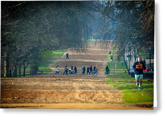 Jogging Greeting Cards - Morning in the Park Greeting Card by David Marcu