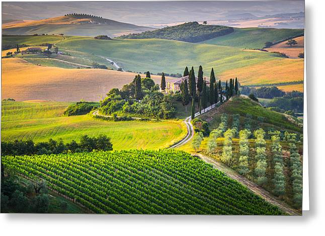 Morning In Tuscany Greeting Card by Stefano Termanini