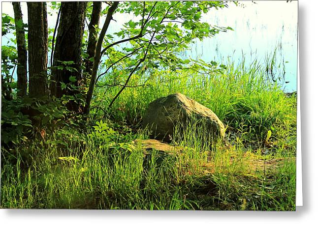 Maine Shore Greeting Cards - Morning Light at Damariscotta Lake Greeting Card by Laurie Breton