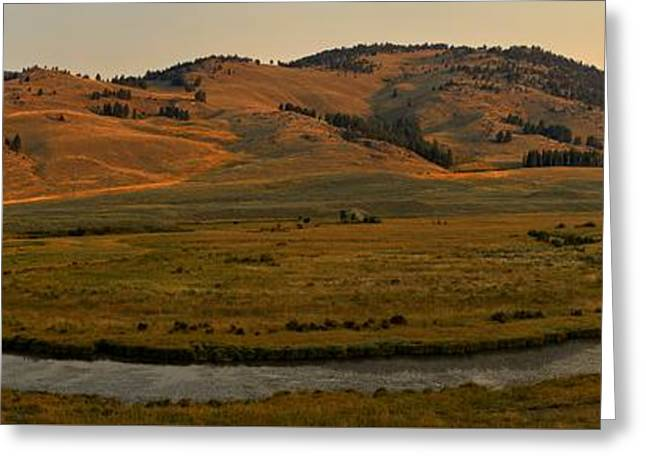 Mountain Valley Greeting Cards - Morning Light At Slough Creek Greeting Card by Adam Jewell