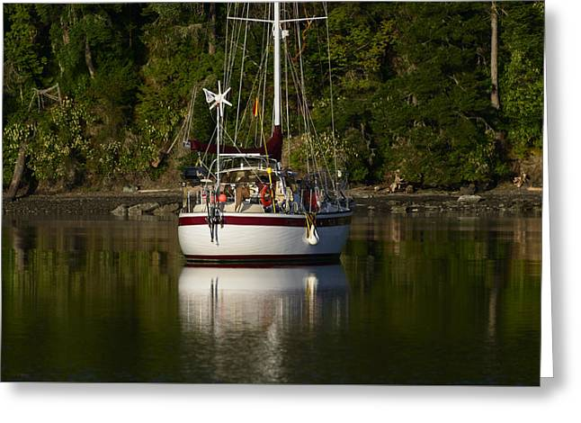 Canoe Photographs Greeting Cards - Morning Light Greeting Card by Bob VonDrachek