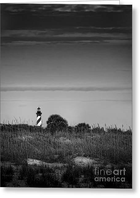 Sea Oats Greeting Cards - Morning Light-bw Greeting Card by Marvin Spates