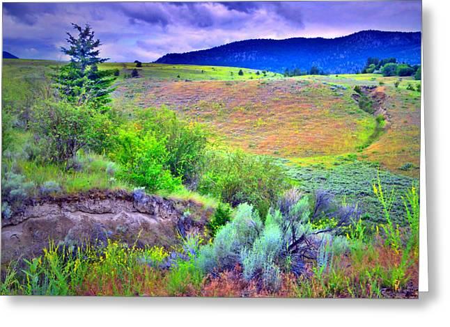 Okanagan Greeting Cards - Morning Light on the Hillside Greeting Card by Tara Turner