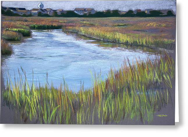 Morning Marsh Greeting Card by Christopher Reid