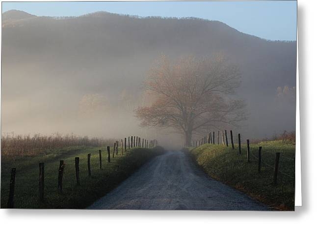 Morning Mist Greeting Card by Christopher Ewing