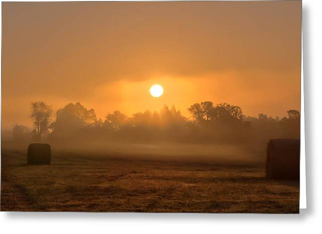 Ron Mcginnis Greeting Cards - Morning On The Farm Greeting Card by Ron  McGinnis