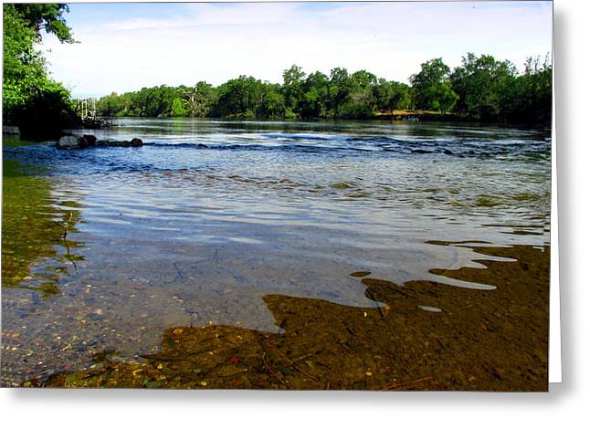 Morning On The Sacramento River At Anderson Ca Greeting Card by Joyce Dickens