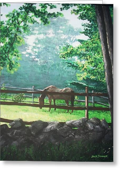 Jack Skinner Greeting Cards - Morning Pasture Greeting Card by Jack Skinner