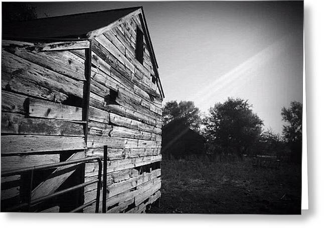 Old Barns Greeting Cards - Morning Rays Greeting Card by Chris Niemann