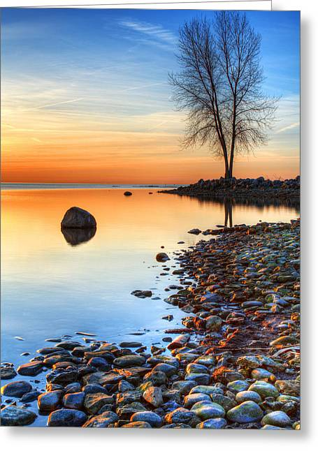 Metro Park Greeting Cards - Morning Reflections  Greeting Card by James Marvin Phelps
