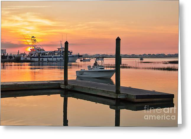 Fishing Boats Greeting Cards - Morning Rush Hour Greeting Card by Michelle Tinger