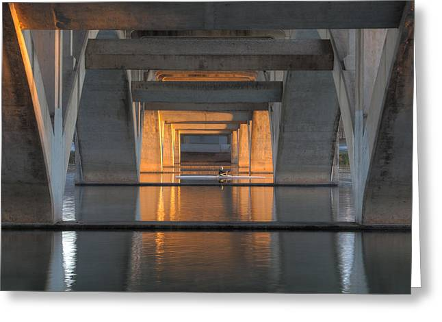 Scull Prints Greeting Cards - Morning Sculler 1 Austin Texas Greeting Card by Rob Greebon