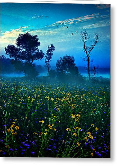 Myhorizonart Greeting Cards - Morning Song Greeting Card by Phil Koch