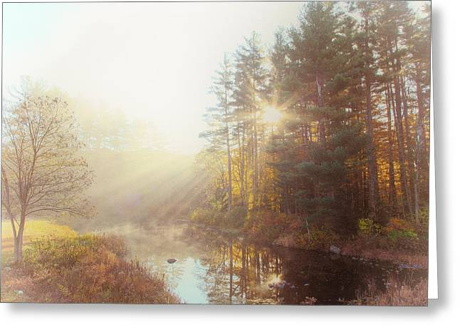 Reflections Of Sun In Water Greeting Cards - Morning Speaks Greeting Card by Karol  Livote
