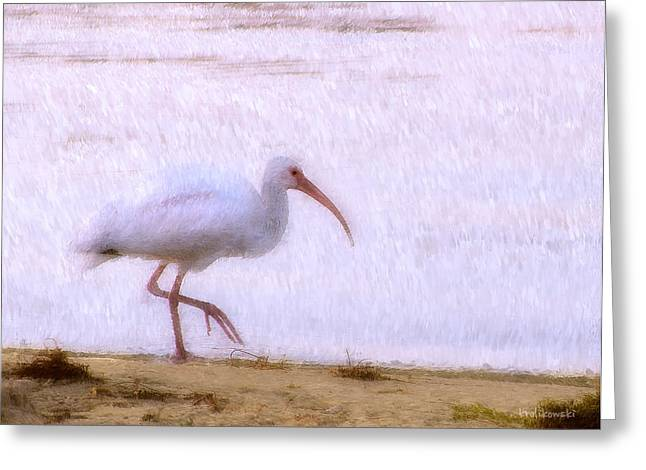Seaside Digital Greeting Cards - Morning Stroll Greeting Card by Kenneth Krolikowski