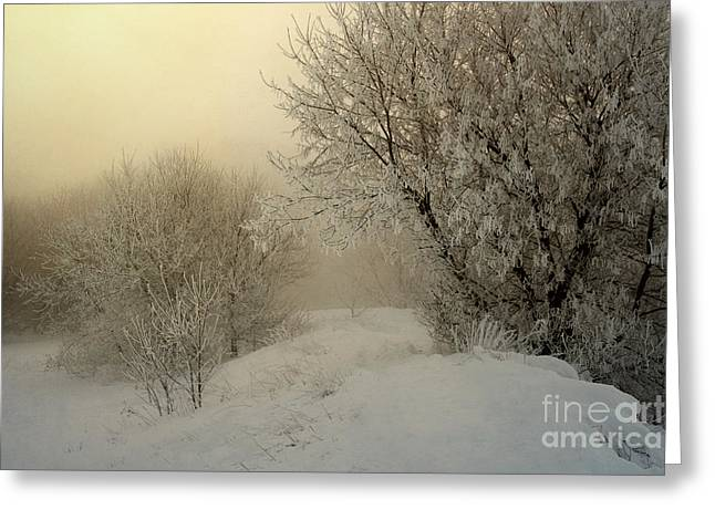 Hoar Frost Greeting Cards - Morning Struggles Greeting Card by Jan Piller
