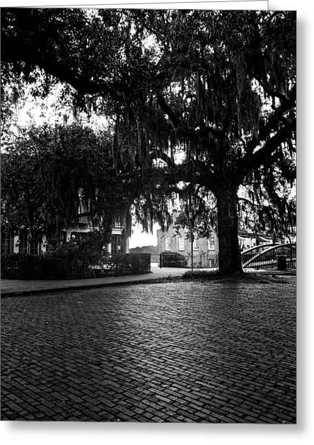Morning Sun On The Bricks Of Savannah In Black And White Greeting Card by Chrystal Mimbs