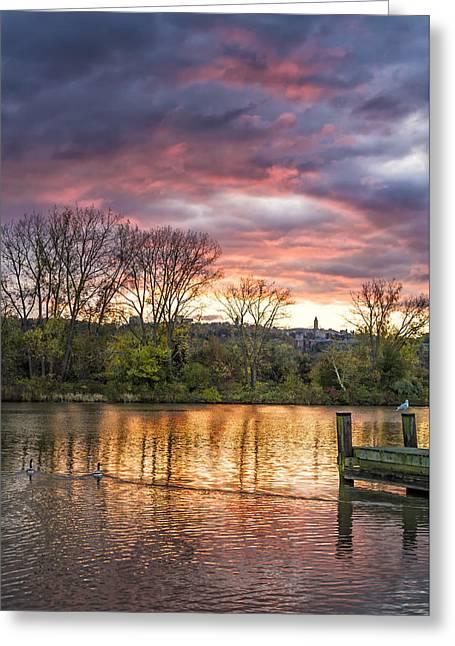 Ithaca Greeting Cards - Morning Swim  4199 Greeting Card by Karen Celella