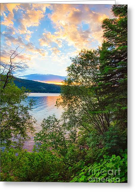Sierra Gold Greeting Cards - Morning View Framed Greeting Card by Anthony Bonafede