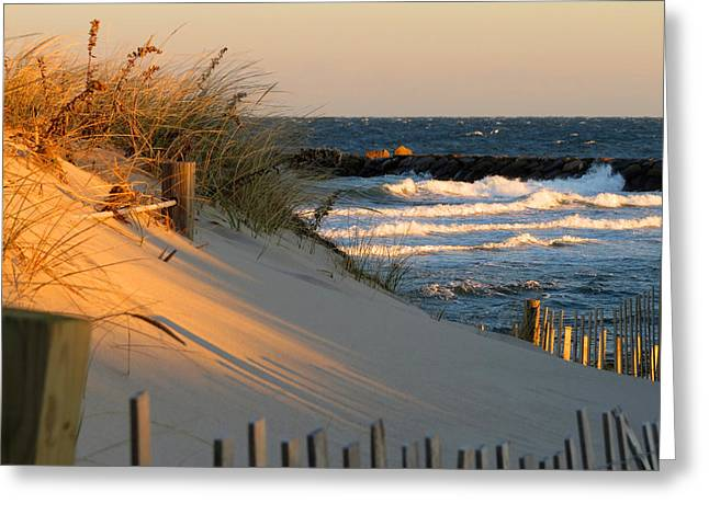 Ocean Shore Greeting Cards - Mornings Light Greeting Card by Dianne Cowen