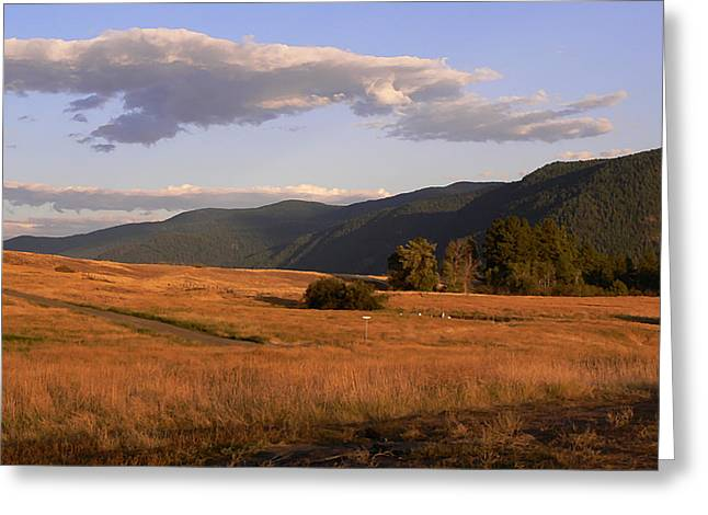 Southern Province Greeting Cards - Morrissey Range Land Grand Forks BC Greeting Card by Barbara St Jean