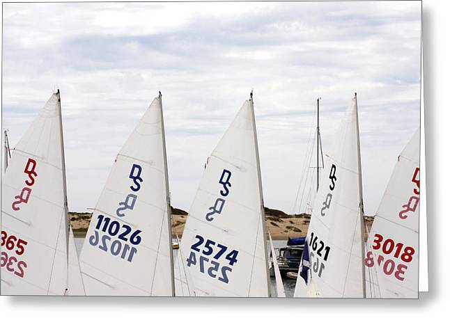Morro Bay Sails Greeting Card by Art Block Collections