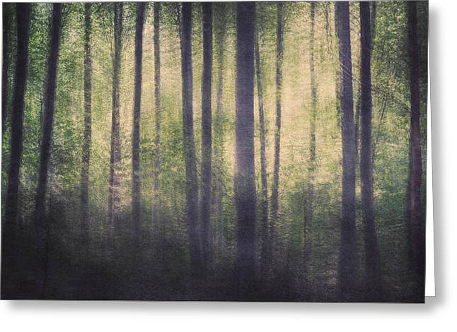 Mortwood Forest Greeting Card by Violet Gray