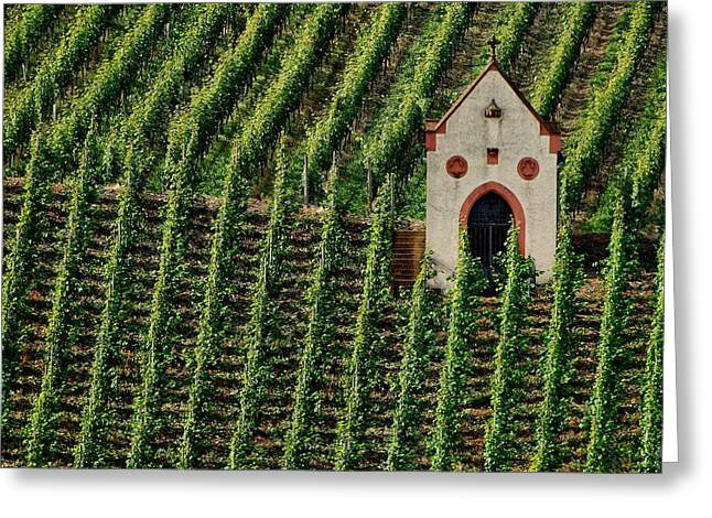 Vinyard Greeting Cards - Mosel River Vinyard No. 2 Greeting Card by Joe Bonita