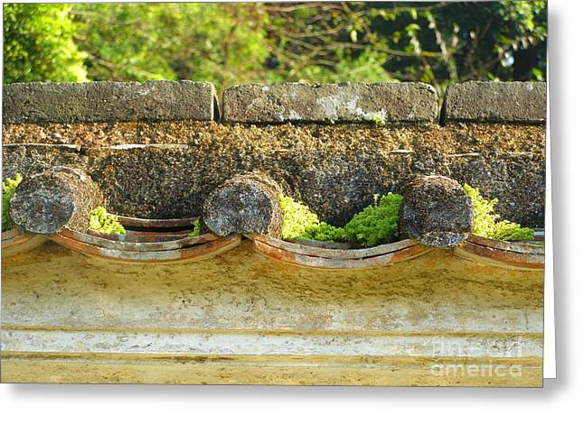Moss On An Old Chinese Roof Greeting Card by Kathy Daxon