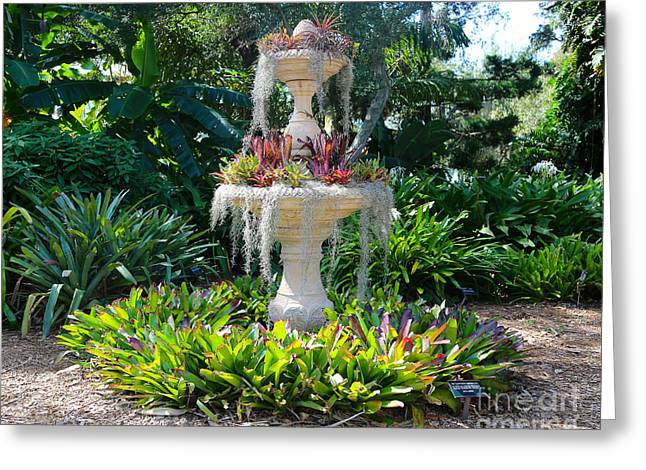 Mossy Fountain With Bromeliads Greeting Card by Carol Groenen