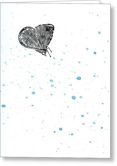 White Background Drawings Greeting Cards - Moth Greeting Card by Bella Larsson