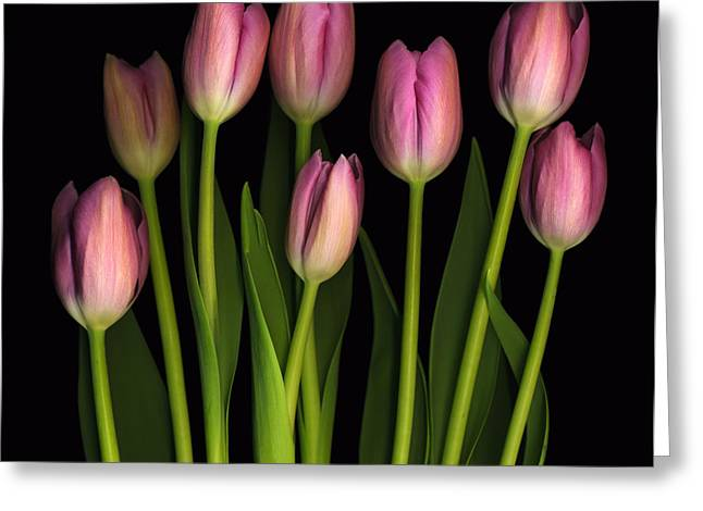 Florals Greeting Cards - Mother Greeting Card by Deborah J Humphries