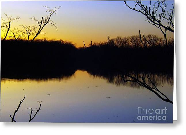Uplifting Greeting Cards - Mother Natures Glow Greeting Card by Robyn King