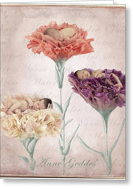 Anne Geddes Greeting Cards - Mothers Day Greeting Card by Anne Geddes